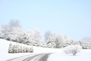 winter1-30-09 042